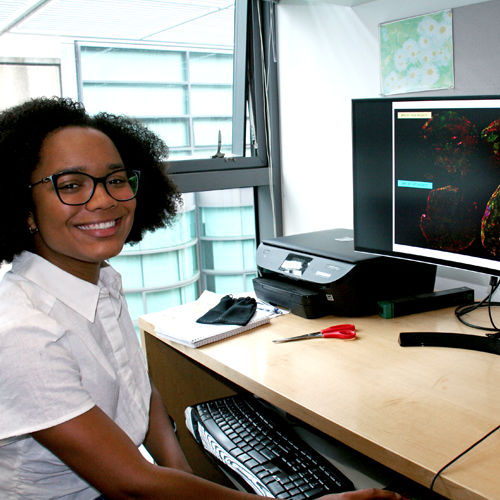 Photo of undergraduate student Alexis Lowber sitting at a desk in the lab, looking at cancer images on a computer screen.