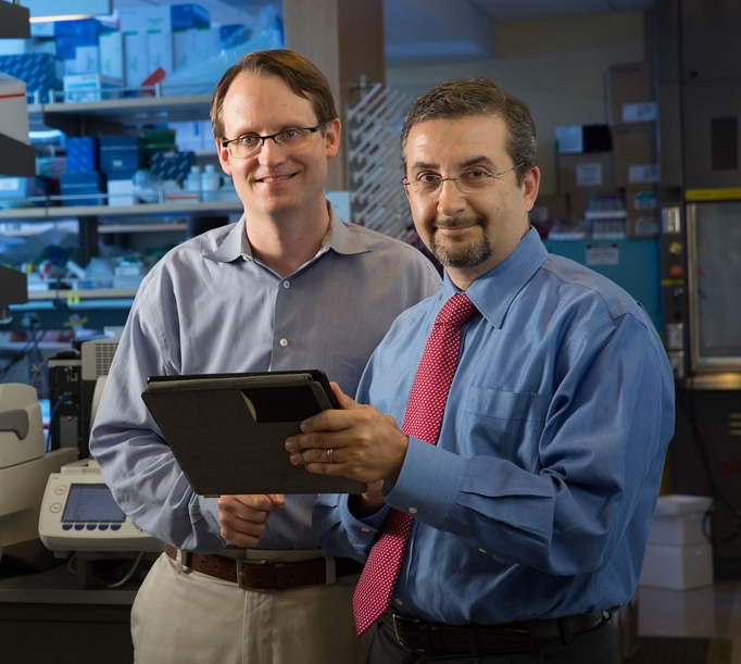 Photo of Drs. Max Diehn and Ash Alizadeh, two relatively young male professors, in laboratory space.