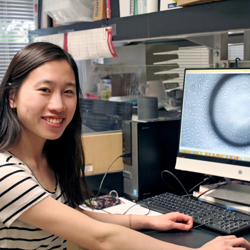 Photo of undergraduate student Emma Tsai sitting at a desk in front of a computer monitor displaying a large gray image of a stem cell.