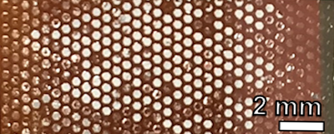 Photo showing close-up of hexagonal compound-eye-like structure of perovskite, assembled and undamaged. Scale indicated is 2mm and individual cells are much smaller than scale bar.