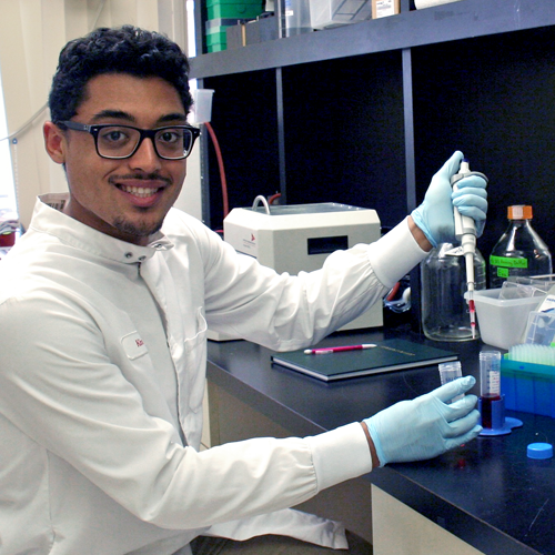 Photo of undergraduate student Omeed Miraftab-Salo wearing a lab coat and sitting at a lab bench, using a pipette to move a solution.