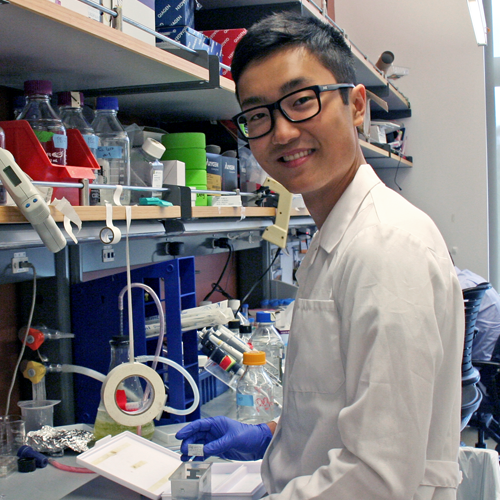 Photo of undergraduate student Tyler Shibata standing at the lab bench and taking small samples out of a container.