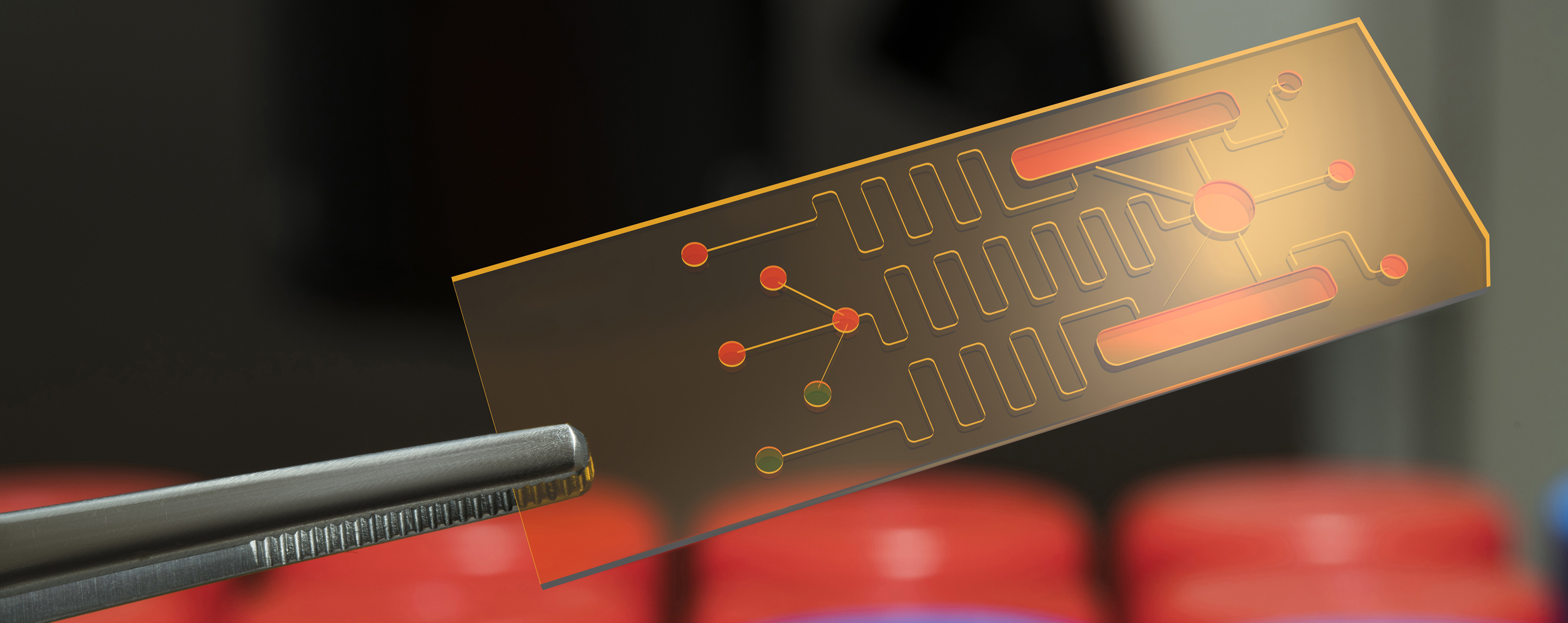Photo of a pair of tweezers holding up a small microfluidics chip.