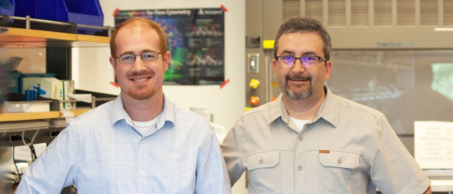 Photo of Drs. Aaron Newman and Ash Alizadeh standing in a laboratory space.