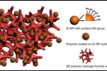 Photo courtesy of Yi Cui: An illustration of a new battery electrode made from a composite of hydrogel and silicon nanoparticles (Si NP). Each Si NP is encapsulated in a conductive polymer surface coating and connected to a three-dimensional hydrogel framework.