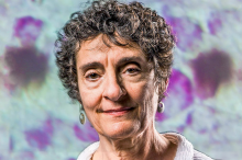 Photo of Dr. Carla Shatz.