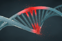 Graphic illustration showing a helix of DNA where several pieces have been damaged and are crumbling, depicted in red.