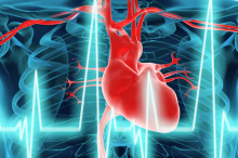 Graphic illustration showing a cross-section of a human body, with a heart lit in red and a blue line of a heartbeat across.