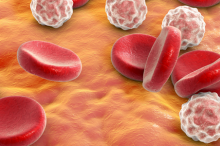 Graphic showing white and red blood cells.