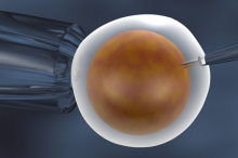 Graphic illustration of a needle being inserted into a fixed cell to represent in-vitro fertilization.