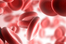 Graphic image of red blood cells.