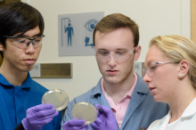 Photo of students Christian Choe, left, Zach Rosenthal and Maria Filsinger Interrante, examining petri dishes in the laboratory.