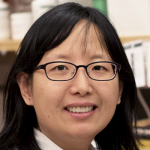 Photo of Dr. Sui Wang, Assistant Professor of Ophthalmology at Stanford University.