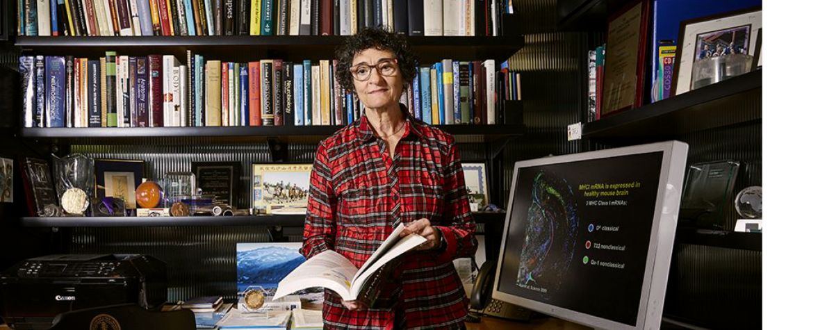 Photo of Stanford Bio-X Director Carla Shatz in her office.