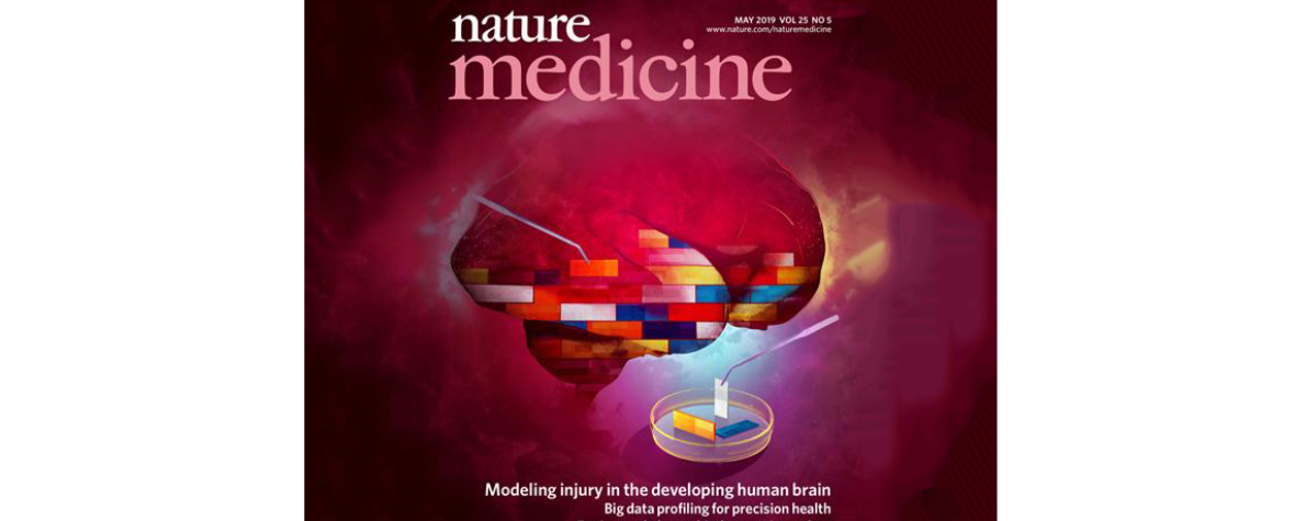 cover of Nature Medicine journal showing a brain made of brick-like building blocks